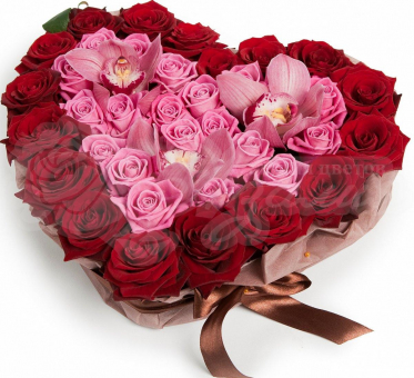 Сердце из 17 красных роз, 19 розовых роз и орхидеи